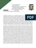 DPO Violencia Contra La Mujer, Ecuador.
