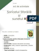 Sunetul R Proiect Didactic PPT