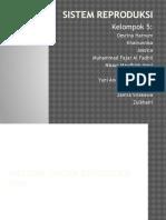 pleno modul 6.pptx