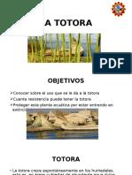 LA TOTORA