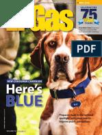 LP Gas - May 2016.pdf