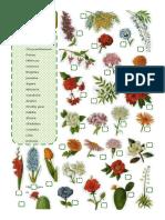 Garden Flowers- Matching