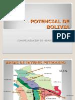 Potencial de Hidrocarburos en  Bolivia