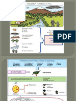 Ecologia Del PerúI
