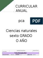 Plan Anual Ciencias Naturales 6to Cuatro