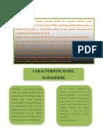 Scribd y Slide Share
