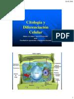 Citología+y+diferenciacion+de+tejidos