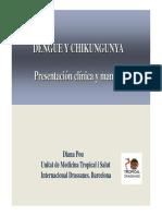 Dengue  y Chikungunya.pdf