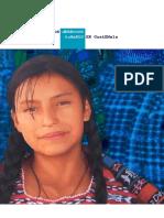 Informe Guatemala 1