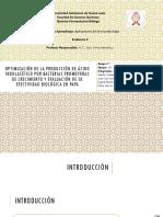 Optimización de La Producción de Ácido Indolacético