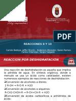 EXPOSICION CATALISIS REACCIONES