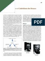 A glicólise e o catabolismo das hexoses.pdf