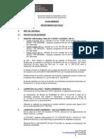 Pasco_Febrero puentes.pdf