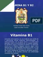 Vitamina b1 y b2