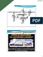 Comercio Internacional y Nacional de Minerales Cap. V (A).pdf