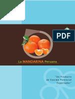 boletin_madarina2014_0.pdf