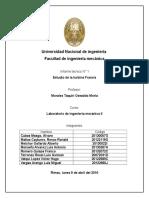 TURBINA FRANCIS.docx