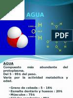 agua acidos y bases.pptx