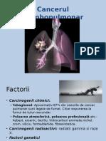 121586810-Cancerul-bronhopulmonar