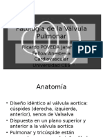Pathology of the Pulmonary Valve