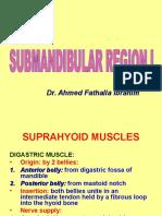 14-Submandibular Region I