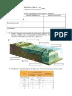 Biología y Geología 1º ESO. Temas 2-3-4