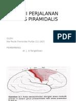 Anatomi Perjalanan Traktus Piramidalis Ika