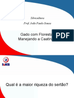 Manejo Silvicultura - Caatinga