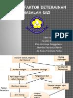 Faktor-faktor Determinan Masalah Gizi