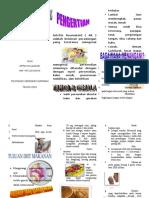 Leaflet Diit Rematik