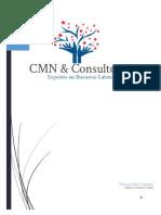 CMN & Consultores PDF