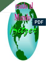 Manual Bitzer Sp
