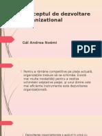 Conceptul de Dezvoltare Organizational