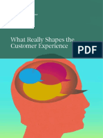 BCG What Really Shapes Customer Experience