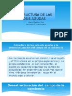 La Estructura de Las Picosis Agudas