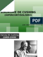 20100413 Sindrome de Cushing Pagina