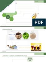 10_Danilo - Fungos e Bacterias