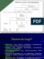 Mortalidad+Perinatal+en+el+Peru.ppt