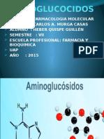 DIAPOSITIVAS AMINOGLUCOCIDOS