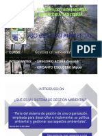 Iso Gestion Ambiental