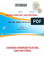Ayuda 2 Cadena Del Gas Natural