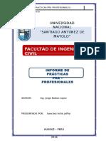 Informe de Practicas Pre Profesionales3