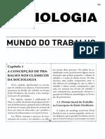Sociologia - Mundo Do Trabalho 28p - TEXTO