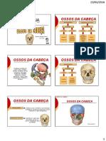 Esqueleto Axial Cabeça