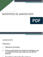 Biosintesis de Aa