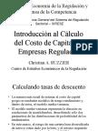 Introduccon Al Calculo Del Costo de Capital en Empresas Reguladas