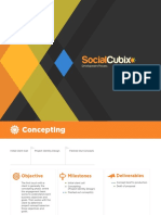 Social Cubix Process