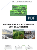 Problemas Relacionados Con El Ambiente