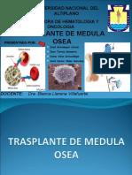 Transplante de Medula Osea (Final)