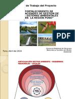 Proyecto Gestion Ambiental Puno